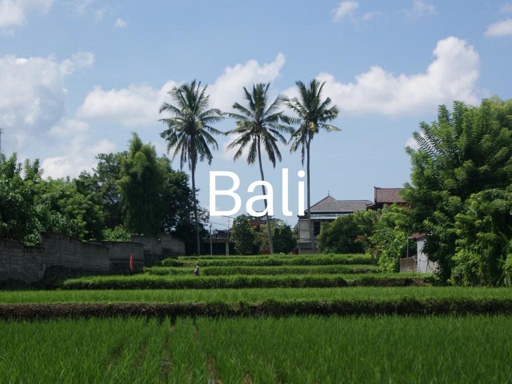 family-travel-adventure-Bali