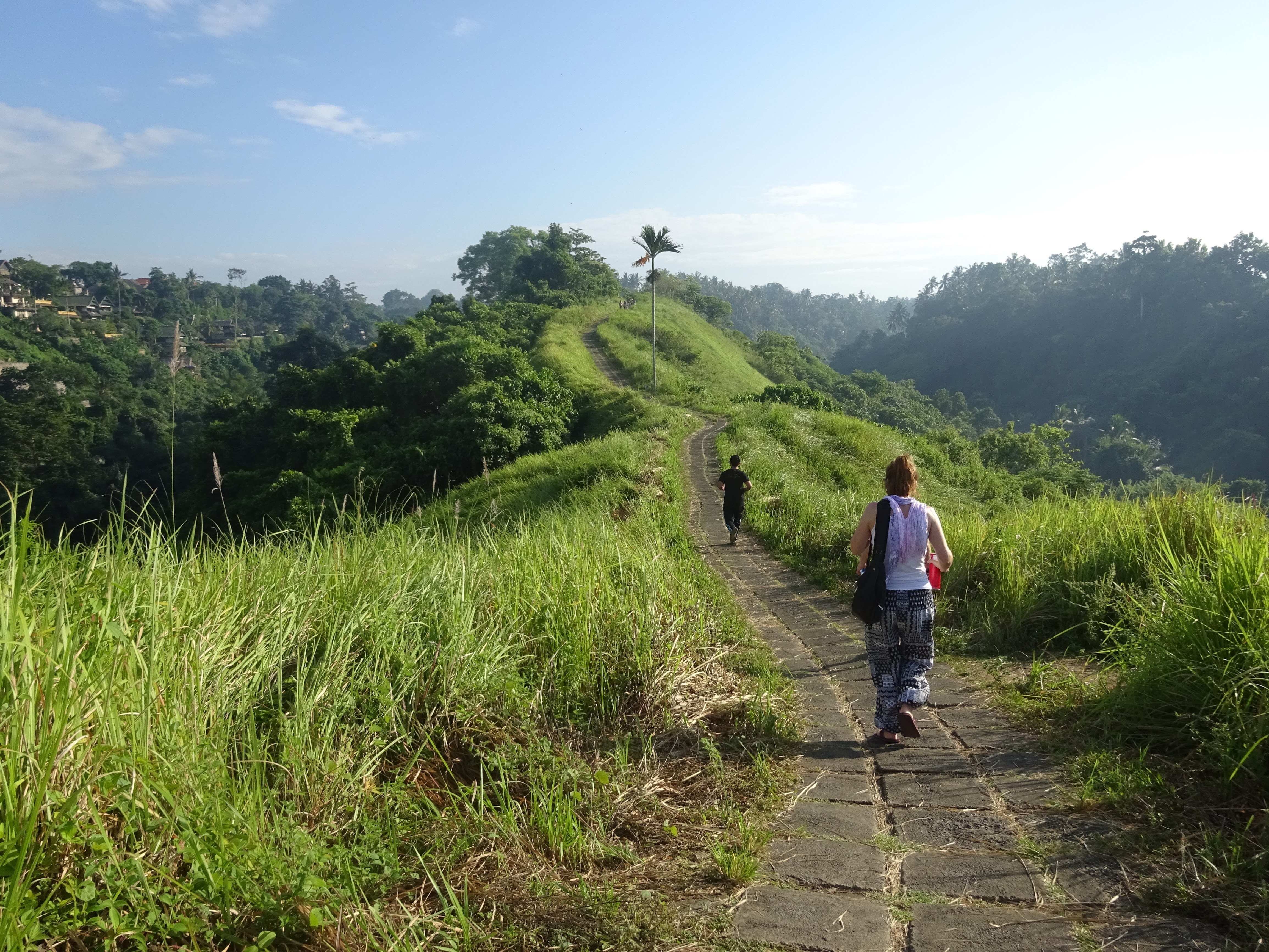Things to do in Ubud Bali - The Campuhan Trail