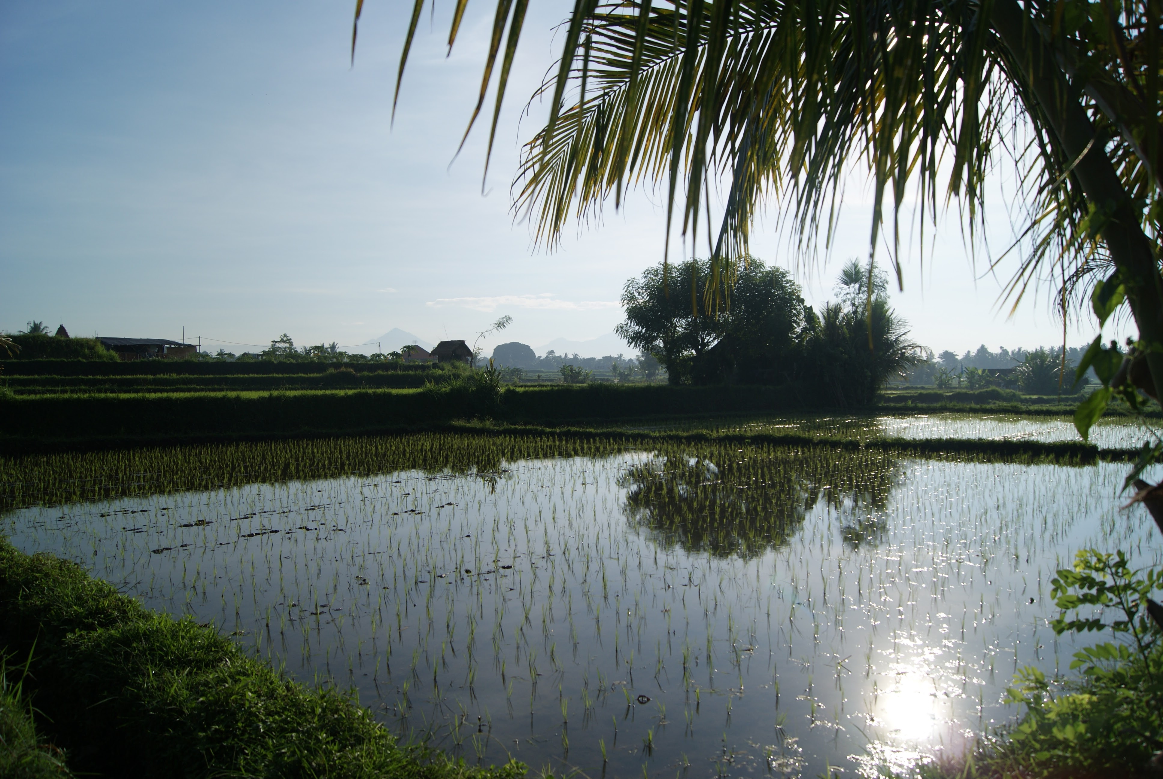 Things to do in Ubud Bali - Ubud Countryside