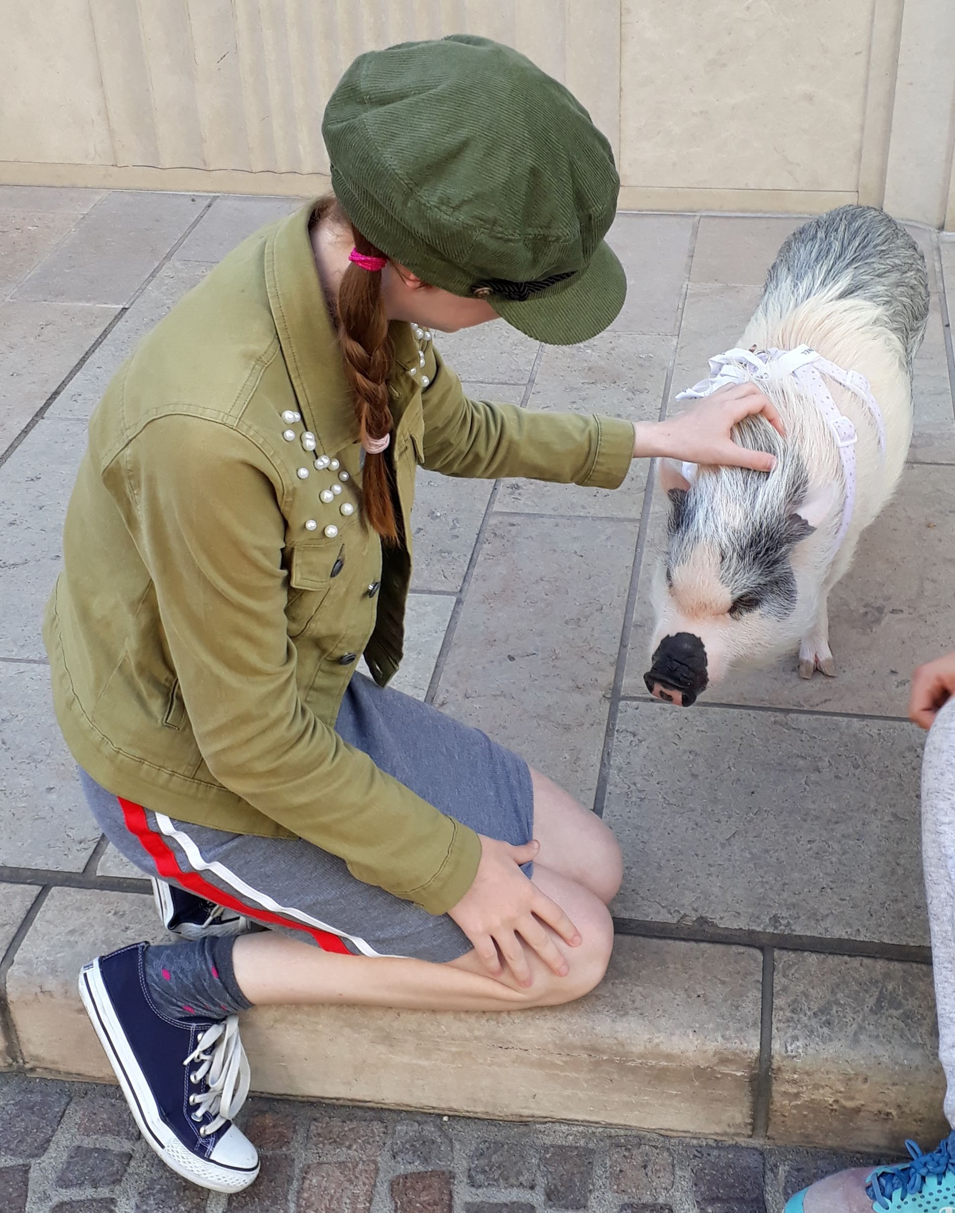 free things to do in Los Angeles - Rodeo Drive Pig