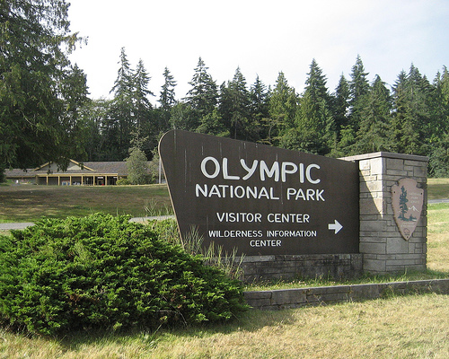 things to do in Olympic National Park - Visitor Centre